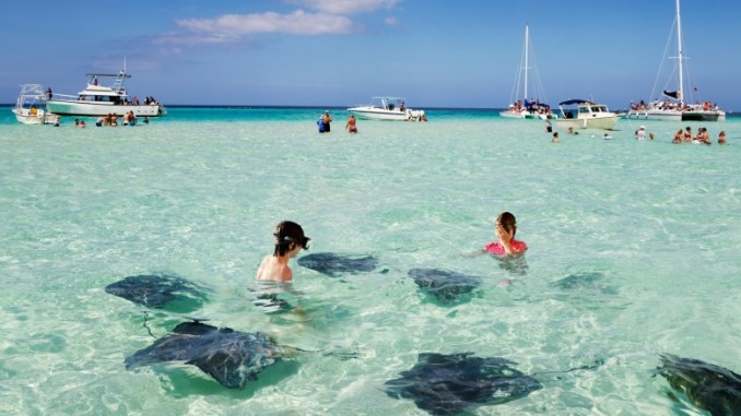 stingray-city